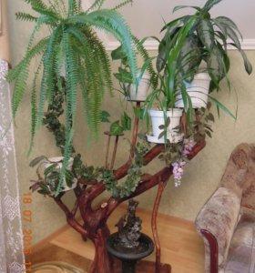 Эко-подставки для цветов из натурального дерева