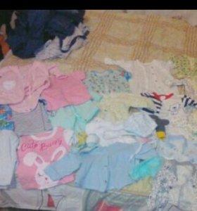 Боди, комбинезоны, рубашки, штанишки, кофточки