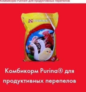Комбикорм для перепелок Пурина (Purina)