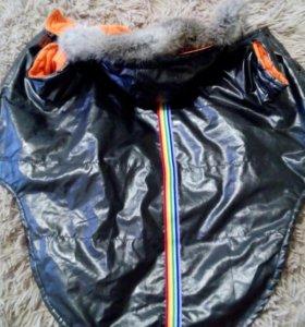 Куртка на крупную собачку.