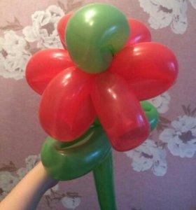 Цветы-шарики в подарок на 8 марта