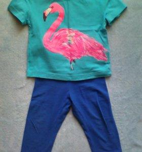 Лосины Pelican.