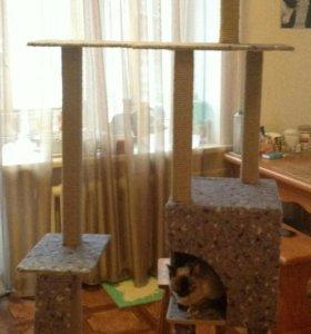 Дом для кошки(кота)