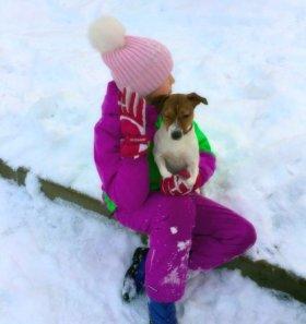 Зимний костюм для девочки Icepeak