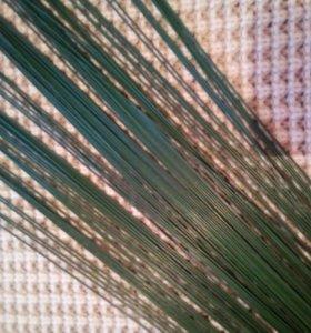 Проволока флористическая герберная 664гр