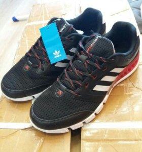 Nike free 3.0/Adidas climcol/AdidasYeezyBoost350