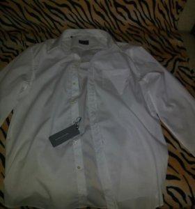 Мужская рубашка от RENE LEZARD