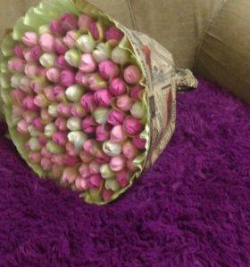 Букет из конфет 101 тюльпан