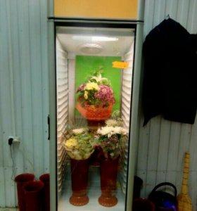 Холодильник среднетемпературный(для любого товара)