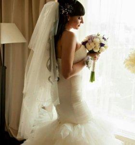 Семейный фотограф. Свадебный фотограф
