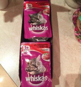 Вискас паштет для кошек