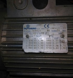 Двигптель ассинхроный( Италия)
