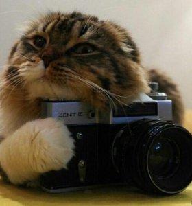 Фотографирую