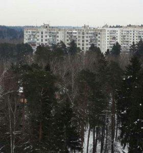 Сдам 1 комнатную квартиру а Мннделеево