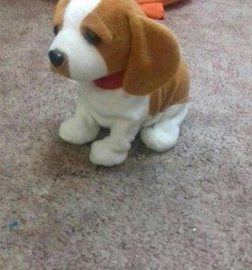 Энтерактивный щенок
