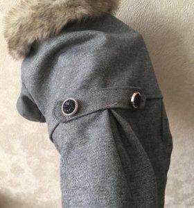 Пальто для собаки