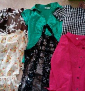 Платья юбки рубашки блузы кофты