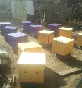 мед пчелы М 506 77 98