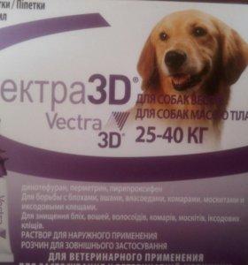 Вектро3D