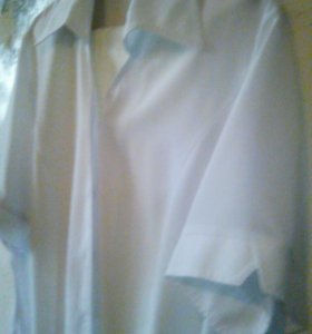 Блузка поло