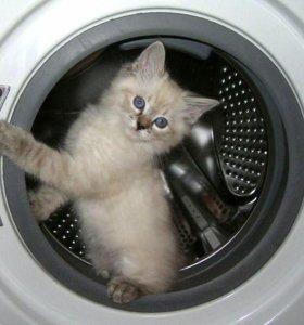 Ремонт стиральных машин автома