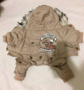 Куртка для собаки дёшево