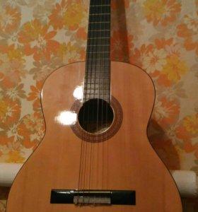 Гитара (с футляром)
