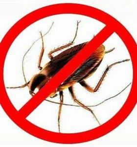 Устраняем насекомых
