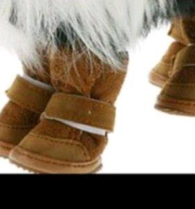 Обувь для собак зимняя, осенняя, весенняя, летняя