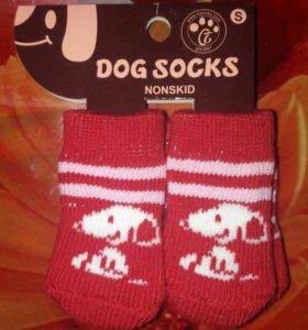 Носочки для собаки или сфинкса