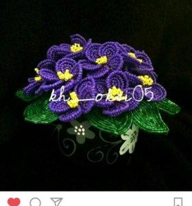 Фиалки любых цветов