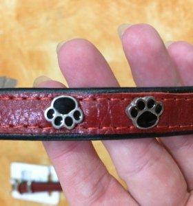 Ошейник для собак с украшением
