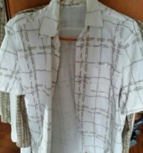 Рубашки по 350