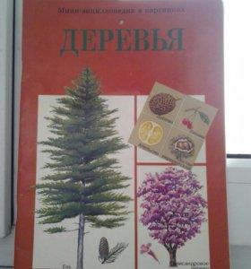 Мини-энциклопедия в картинках (Деревья)