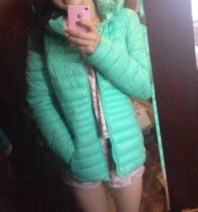 Куртка ментоловая 🐾