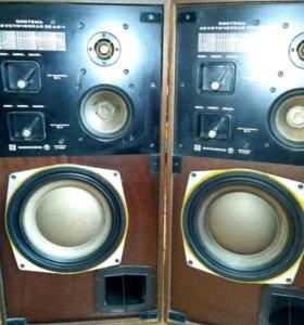 Система аккустическая 35 ас 1