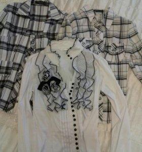 Блузки по 350