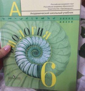 Биология 6 класс