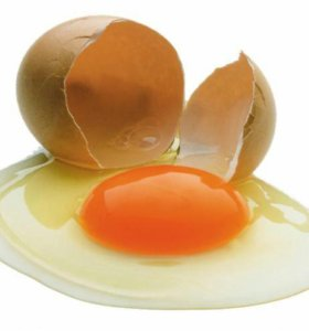 Яйцо куриное домашнее