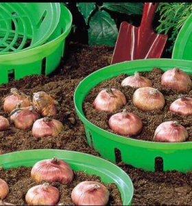 Корзины для луковичных растений (3 шт).