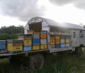 Прицеп под пчел. Пчеловодческий