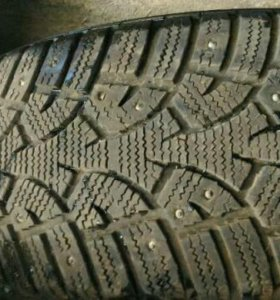 Gislaved nord frost 3 195/65 r15