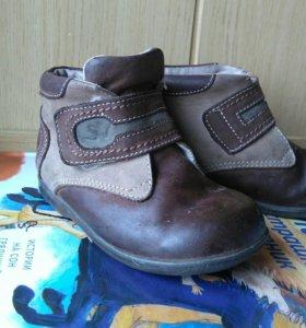 Ботинки натуральная кожа демисез 23р для мальчика