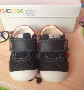 Geox новые