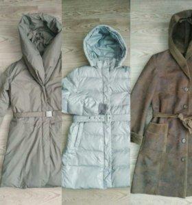 Куртки / пальто 44-50
