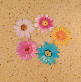 Пуговицы цветочки дерево 35мм для декора