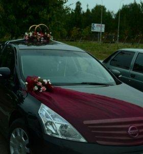 Свадебное украшение на авто, прокат