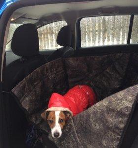 Автогамак для собаки