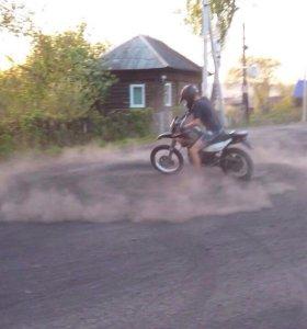 Racer Panther