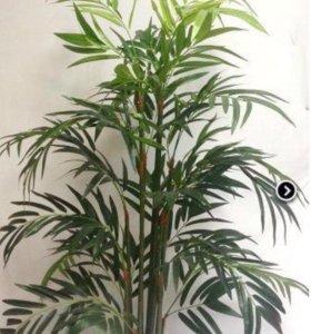 Пальма ховея искусственная